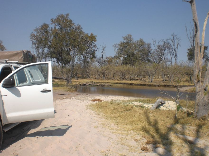 Crossing a river in the Okavango Delta