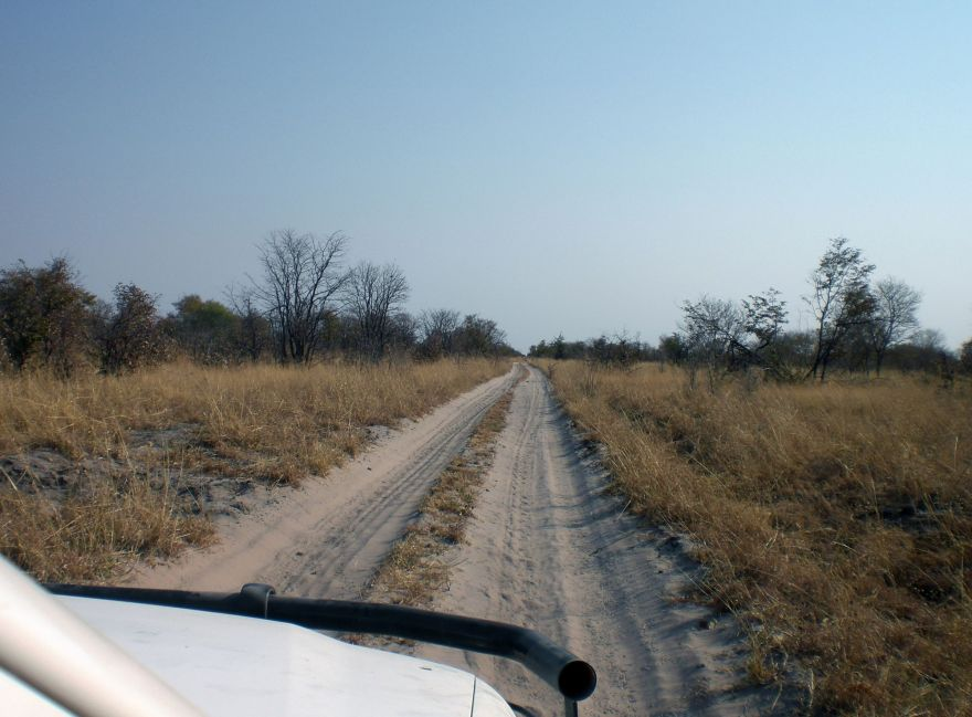 Driving in Chobe National Park, Botswana