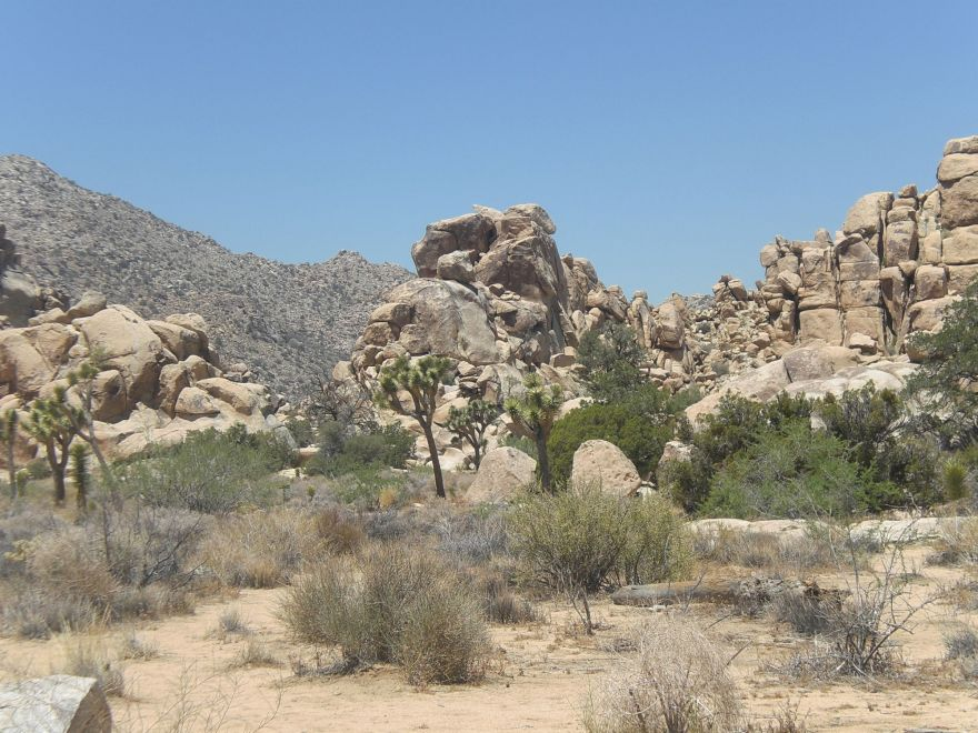 Rocks at Joshua Tree National Park